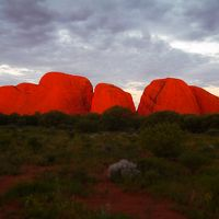 絶景大陸オーストラリア エアーズロック&シドニー� ウルル&カタジュタ