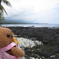 2016年5月ハワイ島(4)カイルアコナ散策ツアー