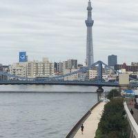 東京散策(八丁堀・茅場町から清澄庭園へ)