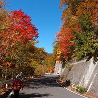 奥利根の紅葉・・照葉峡と奥利根水源の森をめぐります。