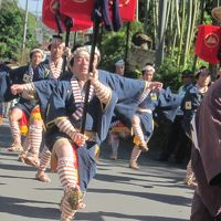 文化の日は箱根湯本で大名行列を見物