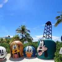 【29】 ダンズ・リバー・フォール(Dunn's River Falls)/ジャマイカ Disney Fantasy 西カリブ7日間 HALLOWEEN ON THE HIGH SEAS