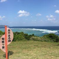 初。奄美大島