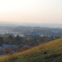 秋を感じて・・歩く奈良 (春日大社、若草山、二月堂へ)