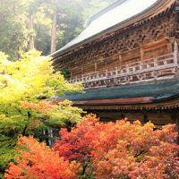 福井の旅:永平寺〜丸岡城