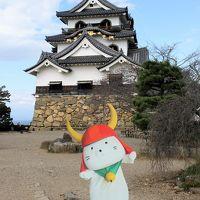 彦根城でひこにゃんに会いました