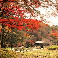 六甲の紅葉と極上のお宿