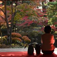 「豪農の館」に赤く染まるもみじを座敷から眺める贅沢さ 2016(新潟)
