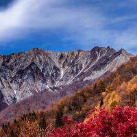 大山 紅葉と 山の雪 見事でした〜  素晴らしい景色!!