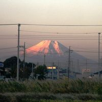 今朝の早朝ウォーキングは北風が強い影響で富士山の素晴らしい姿を見ながら歩くことが出来た
