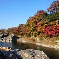 2016年11月 長瀞・神川ドライブ旅行♪長瀞ライン下り〜紅葉と冬桜のコラボ♪