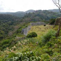 秋の沖縄・・世界遺産「城」+アルファの旅♪2日目�・・備瀬のフクギ並木と今帰仁城。