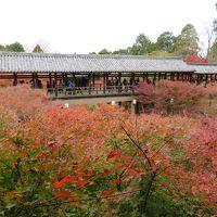 紅葉の人気スポット京都の東福寺訪問!(再修正版)