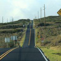 ハワイ島でゴルフ&海を満喫する一週間(その3)〜ハワイ島ぐるりドライブ(プルナウ・キラウェア・ヒロ)〜
