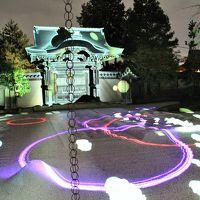 京都の紅葉、2度目のお出かけは一番混雑の凄い11月の週末に・・・大覚寺・宝厳院・高台寺のライトアップ☆彡老松で和ティータイム♪
