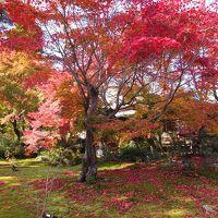 京都・嵐山の紅葉
