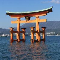 名古屋から弾丸日帰り、宮島、原爆ドームへ行ってきました。