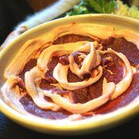 ジビエが食べたくて「ぼたん鍋」の篠山へ!有馬や六甲の夜景、ルミナリエも堪能してきました!