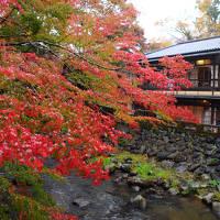 秋色の湯町へ~中伊豆・修善寺温泉~
