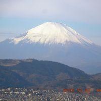 表丹沢・弘法山の紅葉を訪ねて