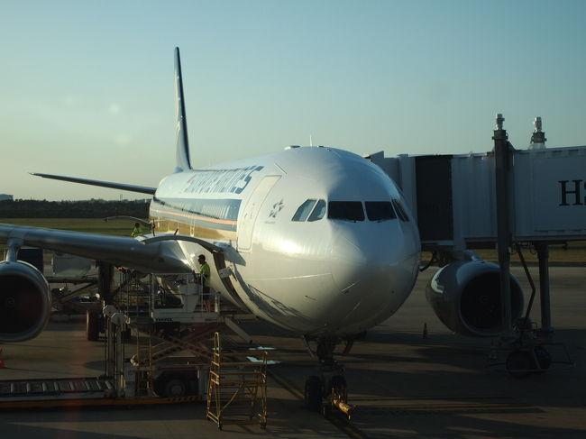 日本への一時帰国からブリスベンに戻る時のストップオーバー。<br />『トランジットdeシンガポール』シリーズ。<br /><br />ブギスをぶらぶらしてから、空港へ!