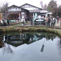 忍野八海・山中湖の旅 2007/01/03