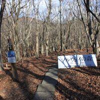 青春18切符一人旅 兵庫県 峰山高原 「ノルウエイの森」のロケ地で森を散歩してみた