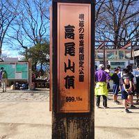 立川に泊まって高尾山に登ろう!