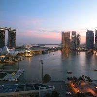 シンガポール(OKA-SIN JALSKYSUITE3)一人旅@マンダリンオリエンタル