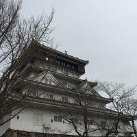 北九州 小倉城と皿倉山