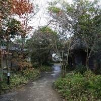 旧家を改築したお宿「天然田園温泉 ふかほり邸」