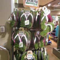 2017年正月ハワイ家族旅行2日目