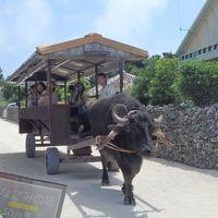 沖縄県石垣島-5泊6日の旅�