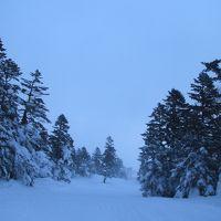 宮城蔵王〜樹氷見学の予定が地吹雪体験へ