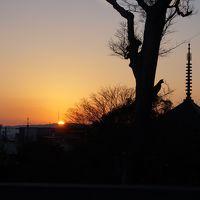 帰省の合間に…ぶらり奈良と大阪観光