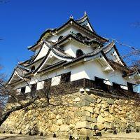 彦根城と長浜盆梅展
