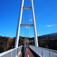 """日田⇒九重 九重""""夢""""大吊橋を渡って 長さ390m ☆渓谷に雪残り"""