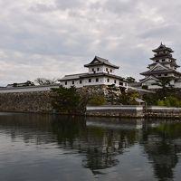 愛媛県:今治城