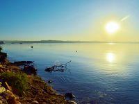 西・中・東部アフリカ10か国を巡る旅−09最後の訪問国ウガンダではビクトリア湖畔に位置するエンテベに滞在