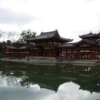 京都に行きたい!�平等院鳳凰堂・宇治上神社・宇治神社・お茶のかんばやし・東寺・都路里でパフェ