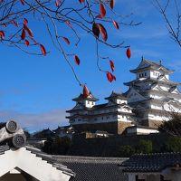 初の姫路、大阪は2回目、京都は何回目? 行ってきました秋の関西旅行 その2