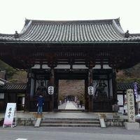 【滋賀・大津】滋賀県立近代美術館「ウォルター・クレインの本の仕事」と梅ほころぶ石山寺を散策