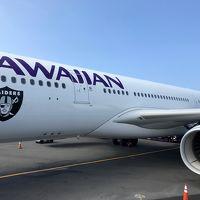 直行便で訪れたハワイ島(ツアーで一周編)