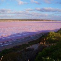 豪州西海岸3500kmドライブの旅1 ピンクレイクからニンガルーリーフ (Hit the road trip in Western Australia 1)