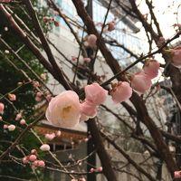 大人散歩 日銀本店見学・福徳神社で当選祈願