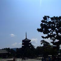 ちょんたさん、ようこそ奈良へ!◆興福寺〜カナカナでランチ〜コトコトでカフェ