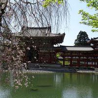 京都の世界遺産巡り 平等院・宇治上神社