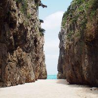 毎年恒例!沖縄(4泊5日)3日目 フグキ並木、備瀬のワルミ、瀬底ビーチで本部をのんびり満喫〜♪