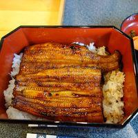 成田のトランジットで時間があったので,ウナギも食べてきました。成田山の参道はにぎわっていました。