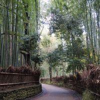 京都の旅:後編